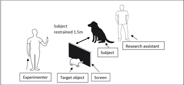 Figure 1GL